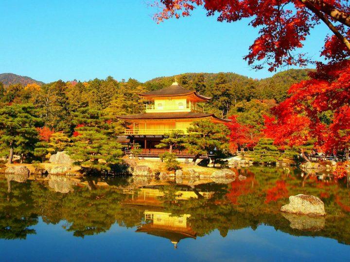 【秋到来】バスで回れる!京都のおすすめ紅葉スポット