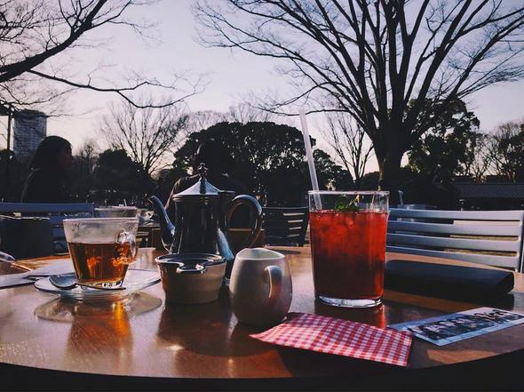 木のぬくもりを感じる店内! 上野の森パークサイドカフェ