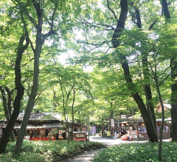 新宿から30分の《深大寺》散歩がオススメ!有名なお蕎麦も忘れずに♪